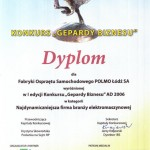 Gepardy Biznesu 2006